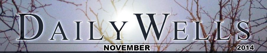 Daily Wells - november 2014